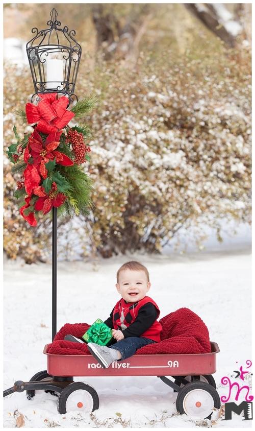 Family-Portrait-Photography-in-Wichita_0585